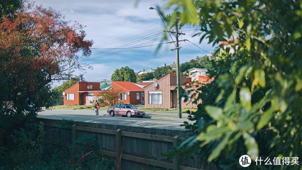 新西兰南岛走走拍拍(下)人像为主、含Airbnb推荐