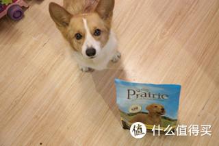 天天吃鸡之 Prairie百利鸡肉糙米全犬粮众测报告