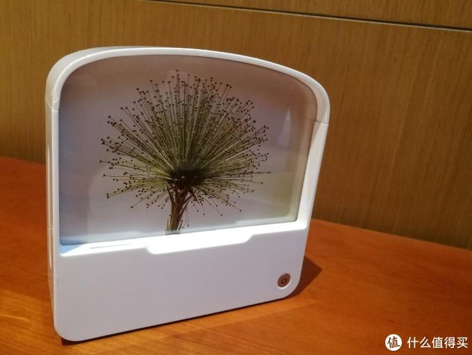 轻众测:袋鼠云路由——尴尬的设计!登不上台面的桌面产品