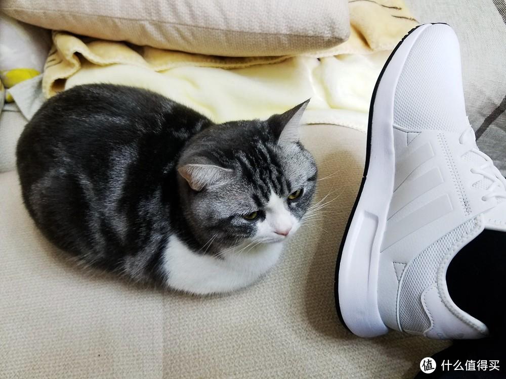 原来你是简版的三叶草NMD:Adidas 阿迪达斯 17年新款 白色 X_PLR 运动鞋 开箱