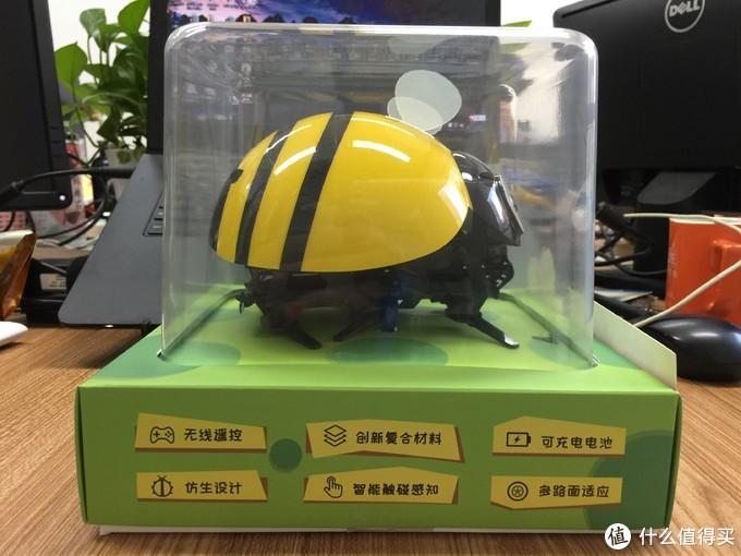 【轻众测】小青蛙与小蜜蜂的故事--评逗逗虫机器人