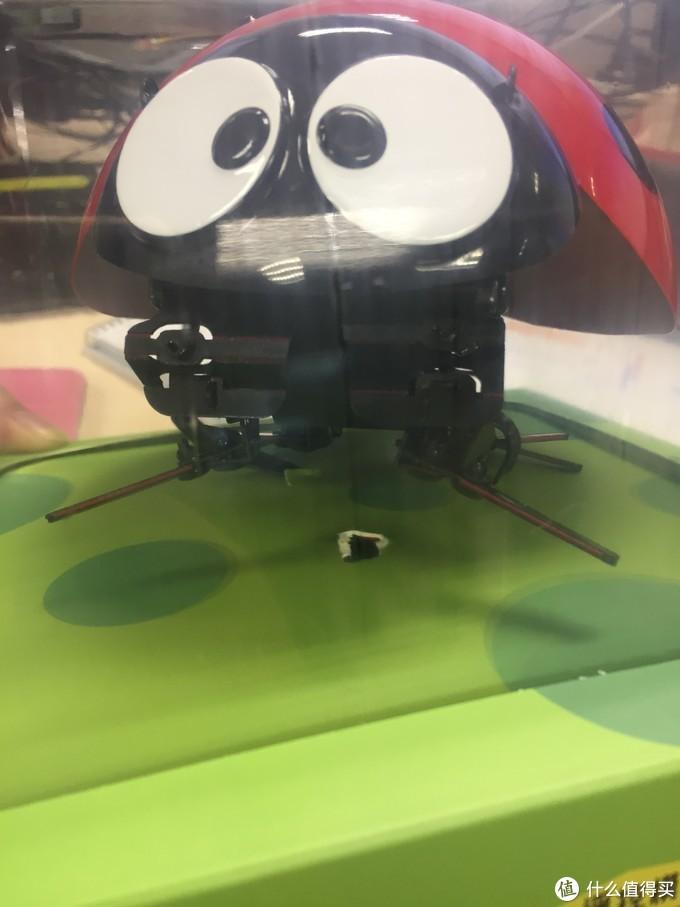 DFRobot 逗逗虫,名副其实!