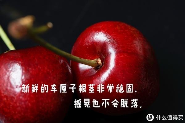 #年货大作战#买什么水果过大年?水果行业内部人士说草莓车厘子橙子要这样买!