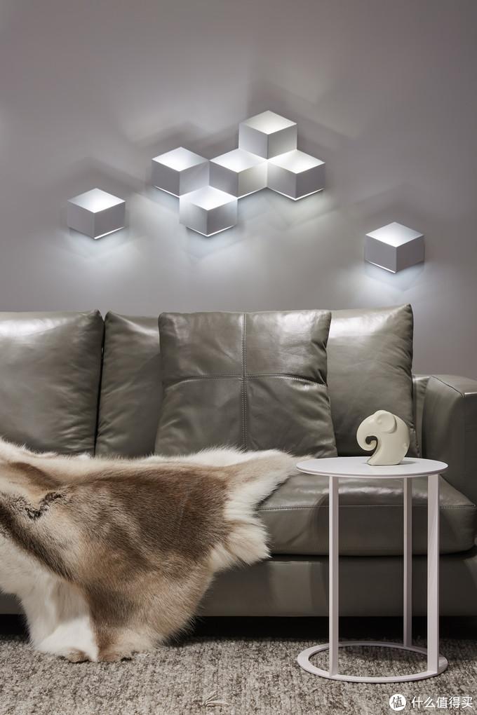 壁灯组合与沙发,鹿皮毯是CHH龙哥家购买的