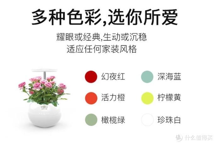 慕奈花舍 智能养花机之屁屁酱的众测---来用APP种花呀