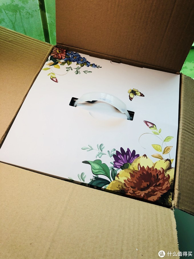 懒人PLUS高科技、我的种子终于发芽了-Wisgrow智能养花机众测