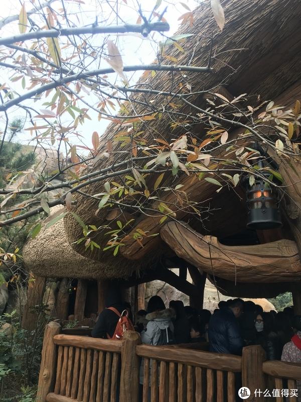 这边风景独好:普陀山礼佛、迪士尼乐园游玩、宜家购物晒单