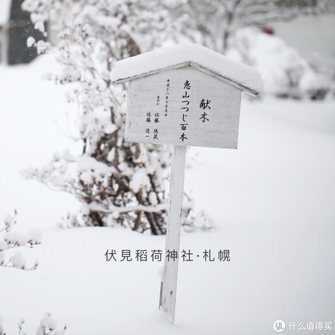 冰天雪地里和天鹅一起全裸泡汤是怎样一种体验-北海道温泉之旅