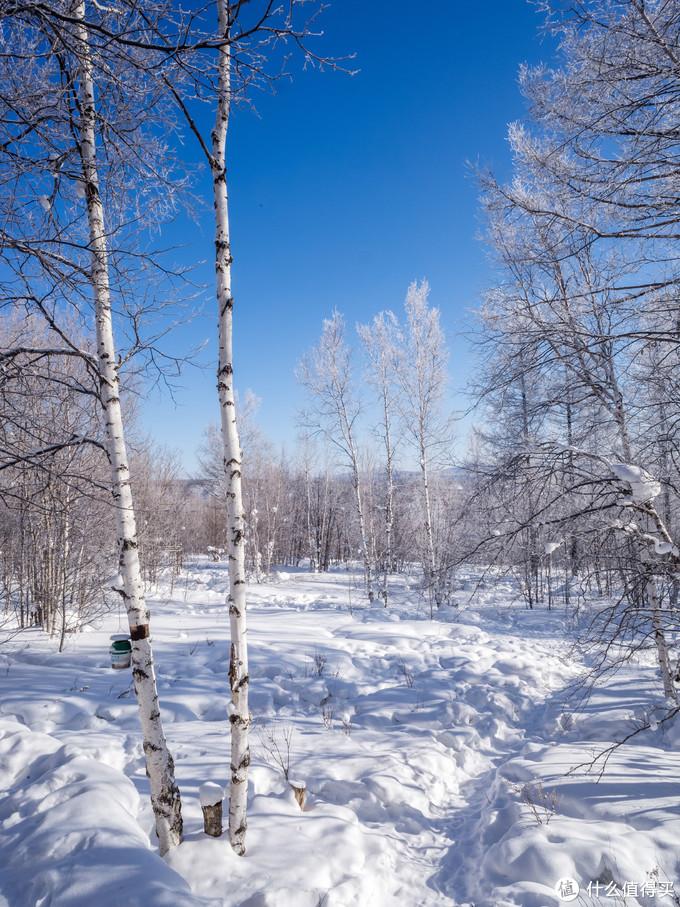 阿尔山冬季旅行摄影