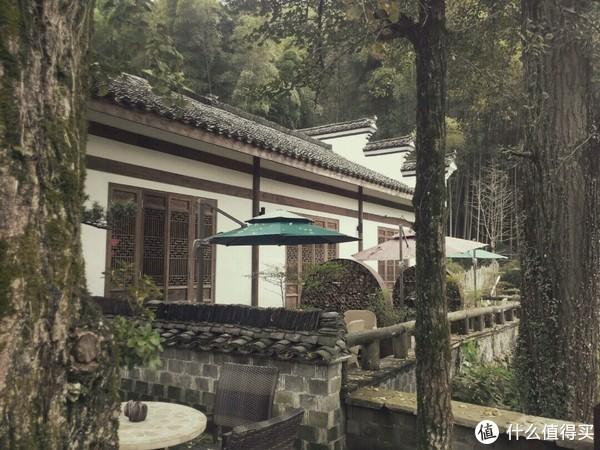节假日来杭州旅游住哪儿 篇二:小众游:感受不一样的杭州之竹海深处有人家
