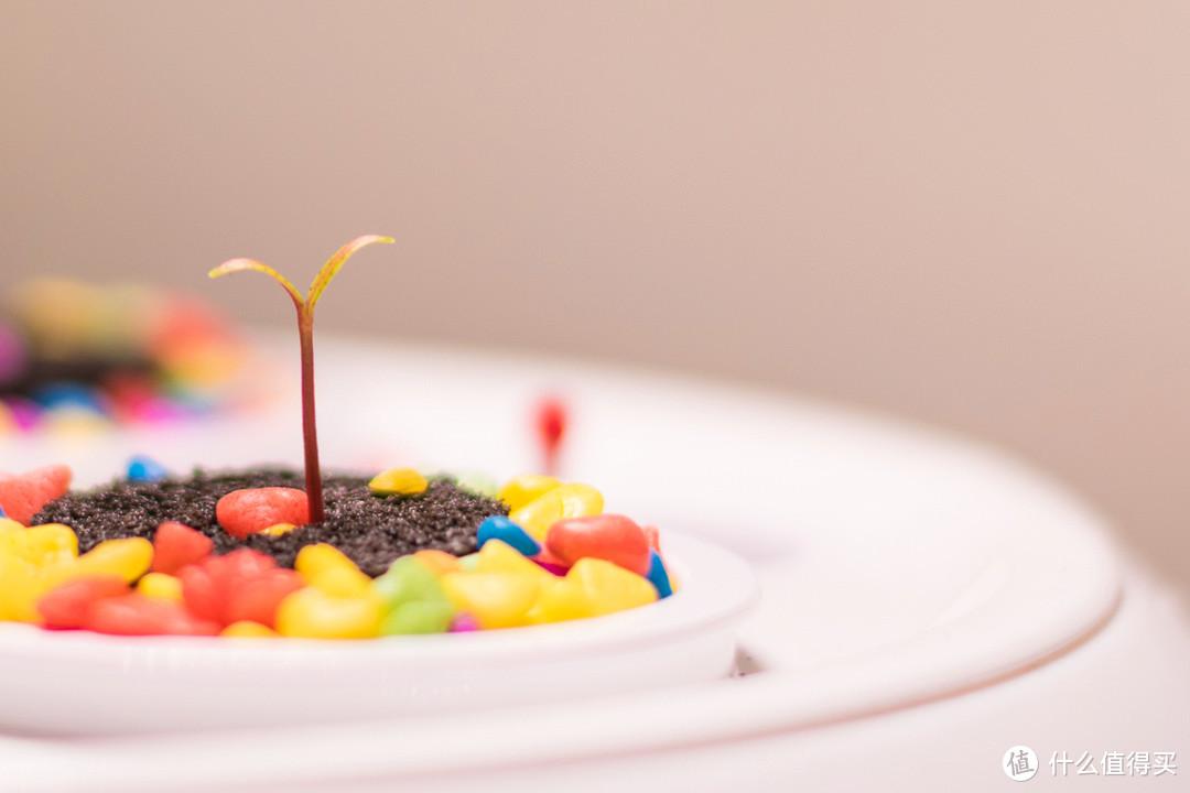 有Ta·轻松养花——慕奈花舍·三生石智能养花机