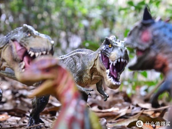 #2017剁手回忆录#恐龙玩具入坑选购指南,晒晒给儿子买的仿真恐龙们!