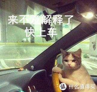 #老司机秘籍#一篇文章额外得2000金币,了解一下?