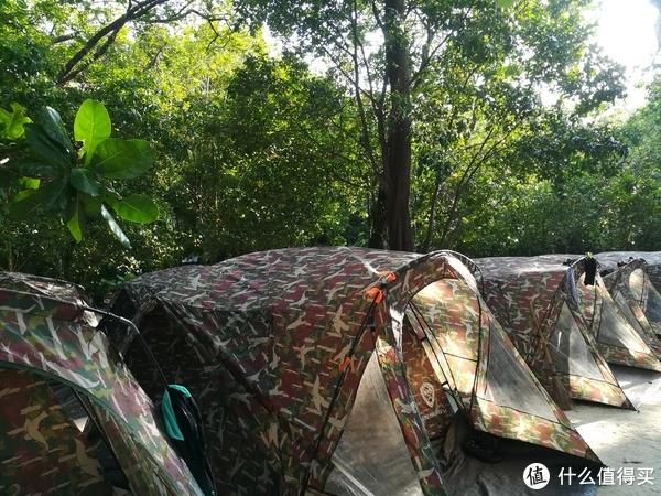 苏林岛帐篷