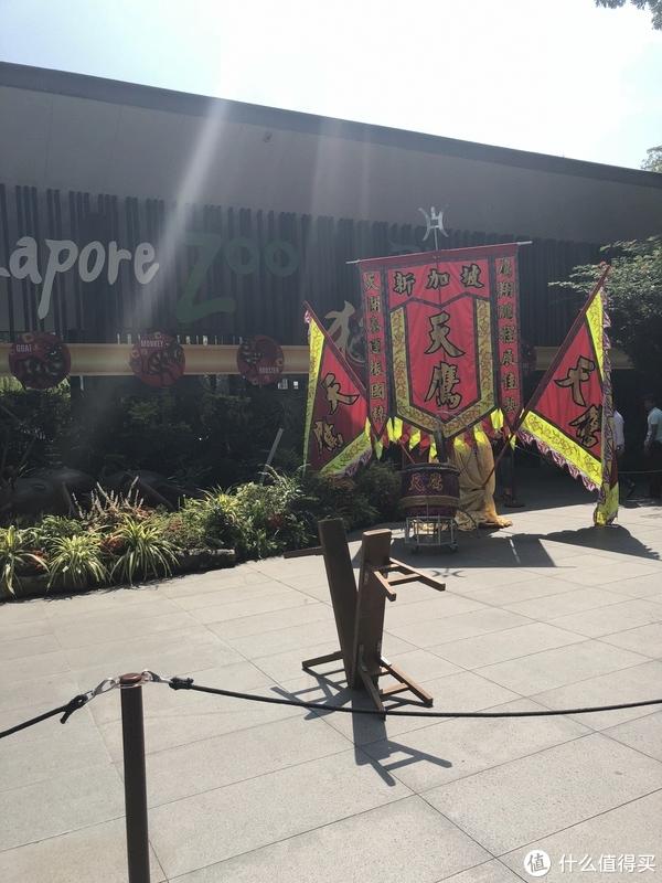 春节游记—新加坡普吉岛 篇三:DAY3新加坡动物园