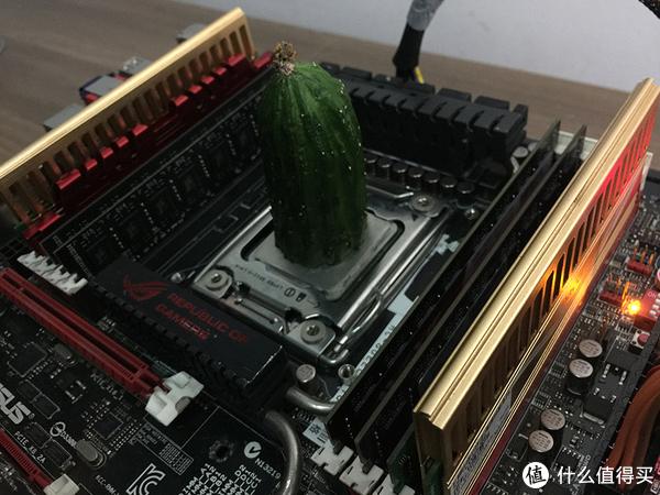 黄瓜也能当散热器?—高性价比错峰装机购物攻略