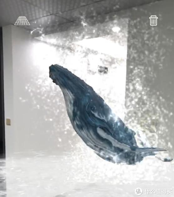 平地出鲸鱼的AR特效