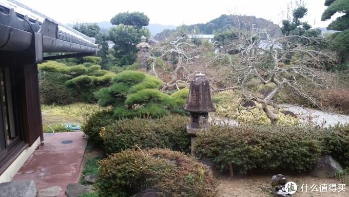 日本首晚花园