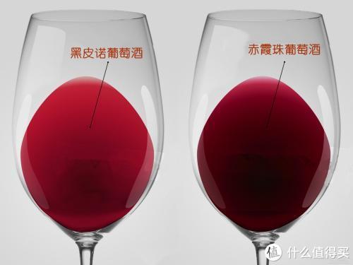 图解常见干红葡萄酒的酒体,留着以后买酒用