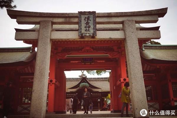 春游关西(京都,奈良,大阪樱花季)