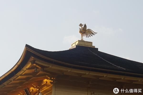 屋顶上的一只金色的鸡
