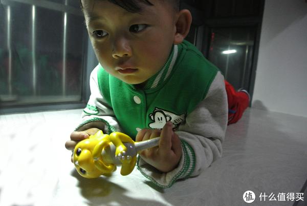 陪伴孩子的指尖精灵—恐龙BABY体验