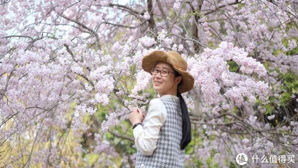 #剁主计划-宁波# 悲痛的机票后续—2018关西樱花速递