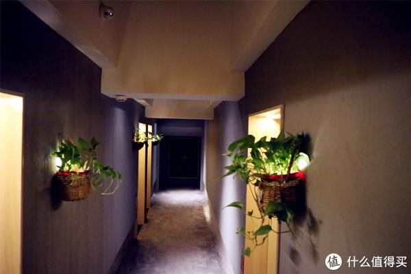 酒店民宿控之住店记录 篇十二:春天,来这家文艺范儿的民宿享受春光
