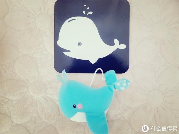 偶是个鲸鱼,不是海豚哦
