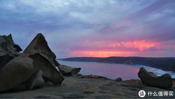 自驾玩转南澳,撩遍袋鼠考拉,品尝海鲜美酒!