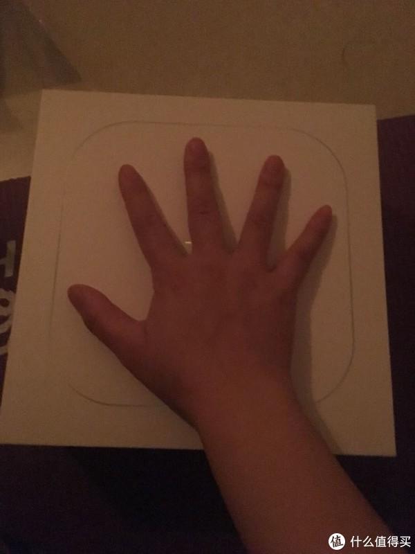 其实,我的手真的没有这么胖