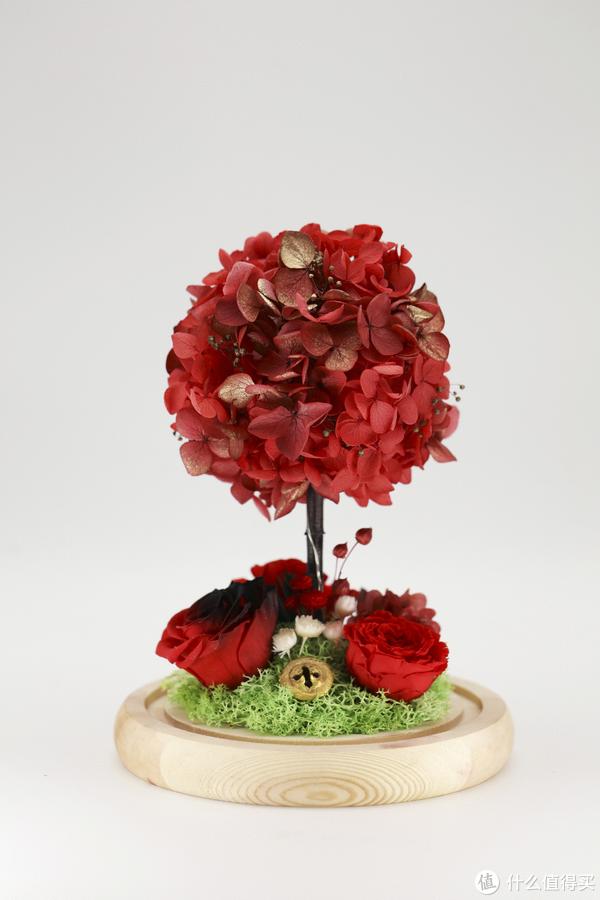 如何DIY属于自己的唯一永生花?