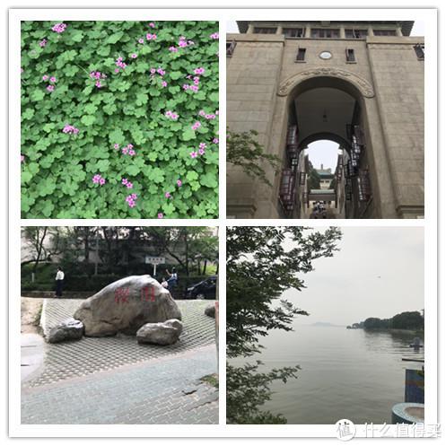 武大与东湖