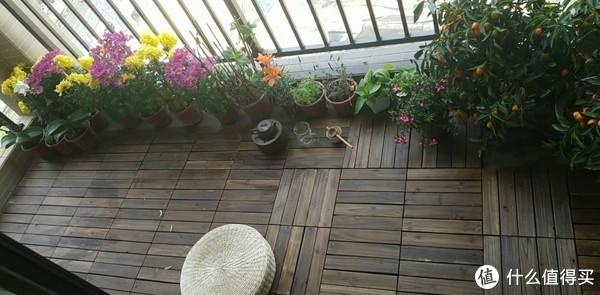 如何用一千块搞定阳台的花草
