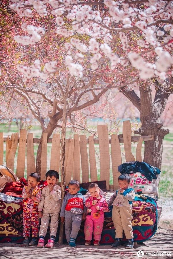 一个人的南疆,只为与杏花相逢