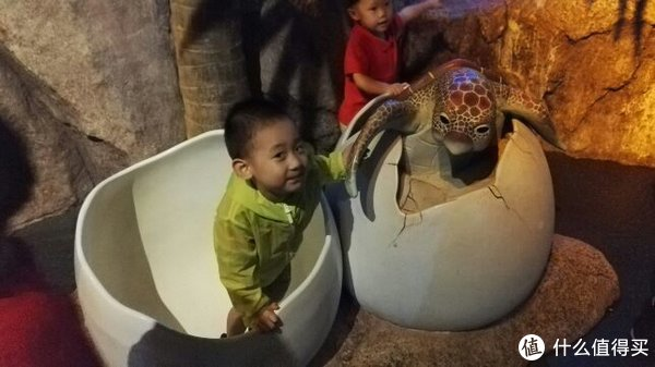 携老扶幼泰国游—曼谷+芭提雅