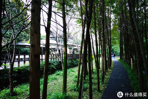 杭州去了N次,今天我们住民宿—九溪十八涧内热土庄园