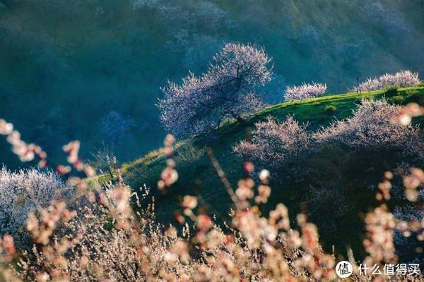 新疆航拍攻略:领略雪山、草地和无尽苍凉