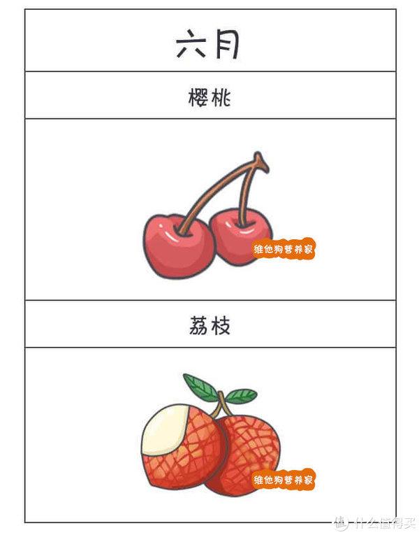 背熟了这个水果经,一年到头吃什么水果都不用愁