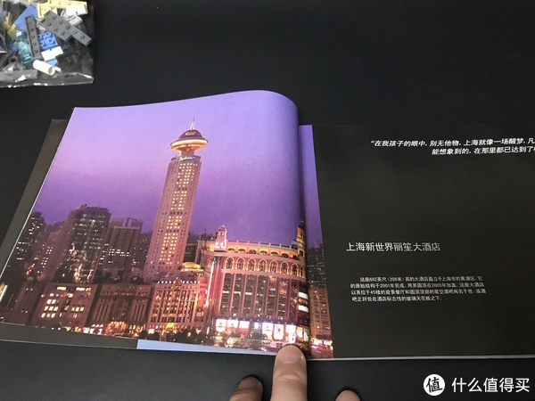 LEGO 乐高 天际线建筑系列 21039 上海 开箱