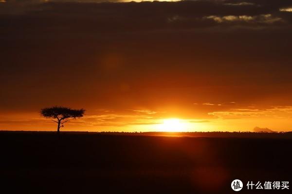 为什么去肯尼亚?