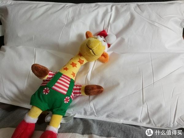 想要一觉睡到天亮,这款薰衣草枕头你值得拥有(开箱评测)