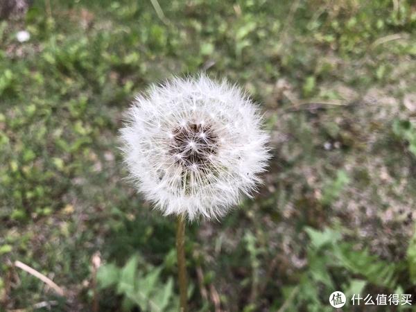 22℃的夏天长白山 篇一:长白山淡季的尾巴