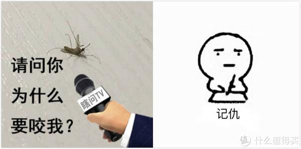 """如何优雅地""""杀""""死一只蚊子?"""