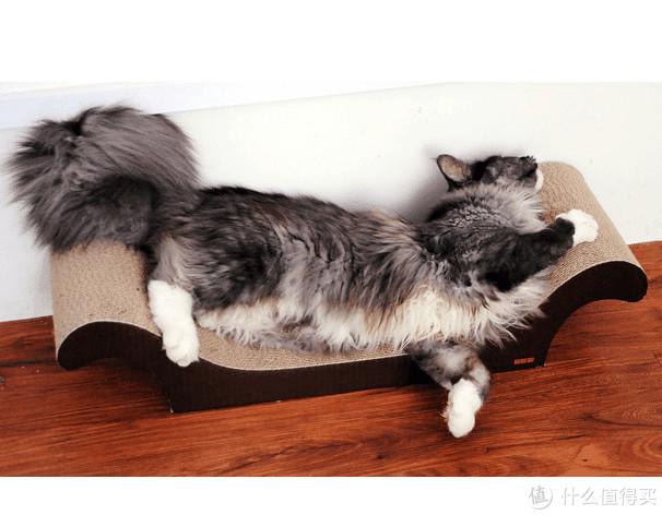 拯救真皮沙发~ 造型猫抓板推荐