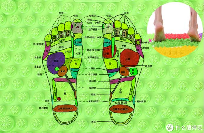 指压板的作用不是让明星龇牙咧嘴的逗大家笑,而是科学的按摩足底穴位,强健身体