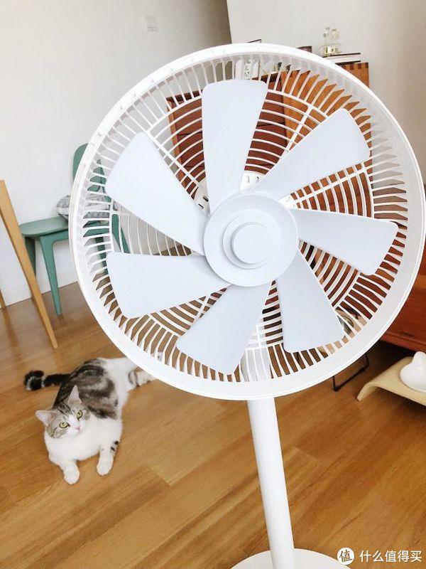 智米自然风风扇体验,在屋里也能享受微风拂面