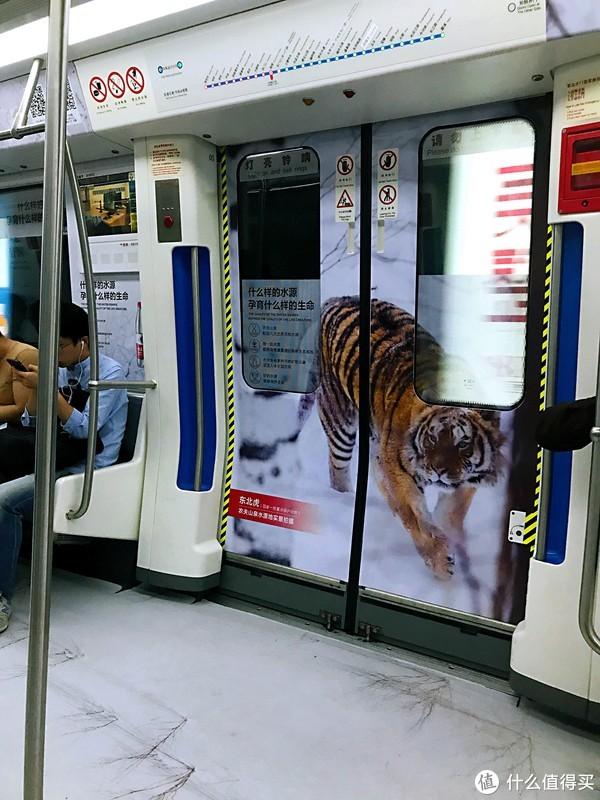 坐了一年多,来聊聊宁波地铁