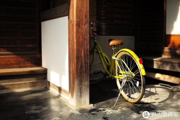 单车又来了!