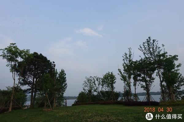 半岛、原滩、田园—涵田茅山半岛酒店度假体验